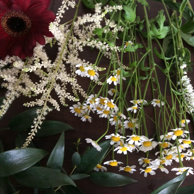 White astilbe and wild daisies
